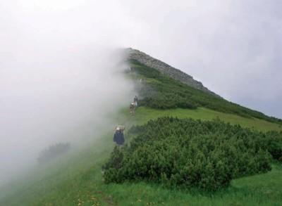 Ігровець в тумані