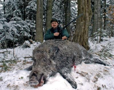 Гори, звірі, та мисливська совість