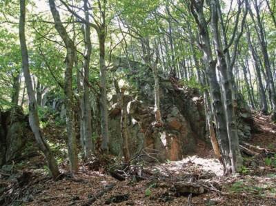 Cиняцько-вулканічні перипетії
