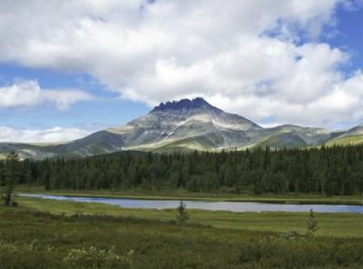 Недитячі гори